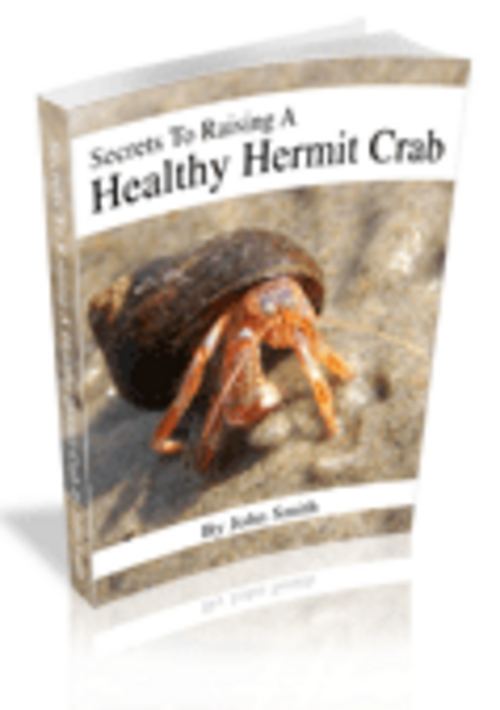 Product picture Secrets to Raising a Healthy Hermit Crab - Definitive Guide